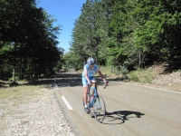 The Changing Landscape of Ventoux